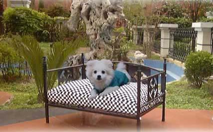 犬専用のベッド